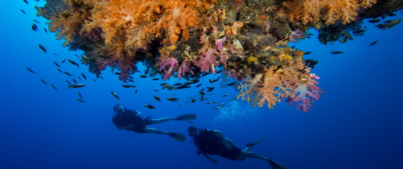 Underwater Secret - Pimalai Resort and Spa